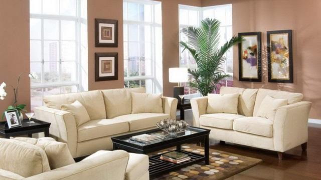 تصفیه هوا در خانه با گیاهان